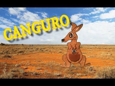 Canción Del Canguro Para Niños El Canguro Para Niños Canguros Niños Animales Gif