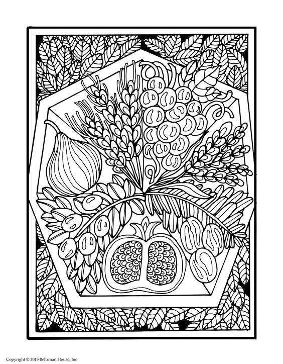 7 fruits for tu bshvat coloring pages | Adult coloring page for Tu B'shvat from Shalom Coloring ...