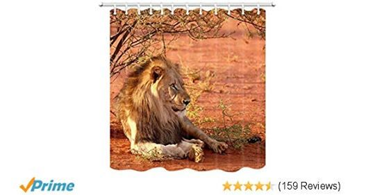 Pin By R B W International On Lions Animals Lion