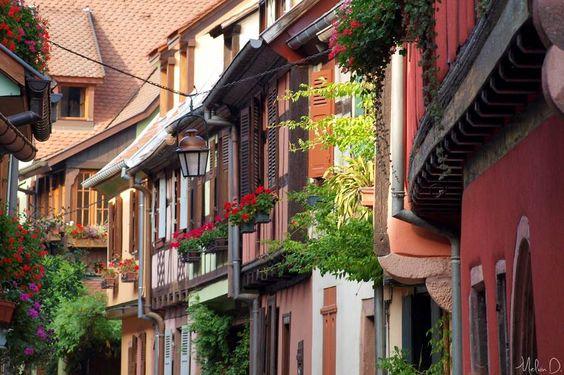 Alsace_Photo Melvin d. photographies