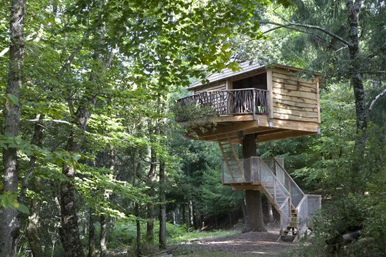 I love love love these treehouses.  Quirkiness personified.