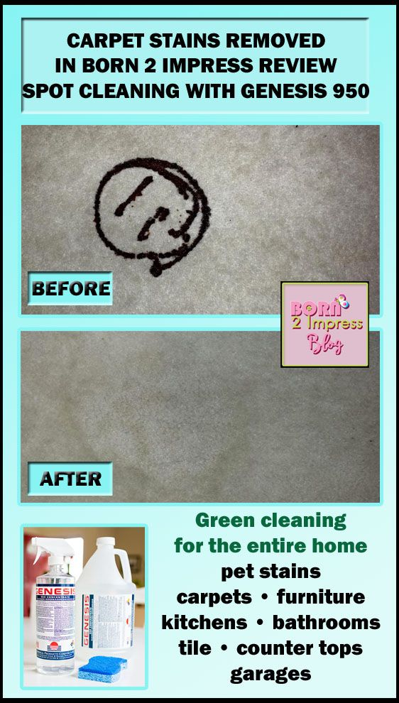 Chocolate stains on the carpet! @born2impress used Genesis 950 to spot clean this happy, smiling chocolate syrup stain.