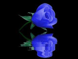 Azul reflejada