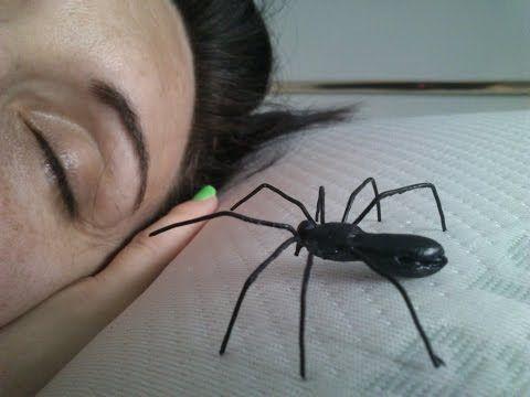 Como hacer una araña para bromas pesadas o prank