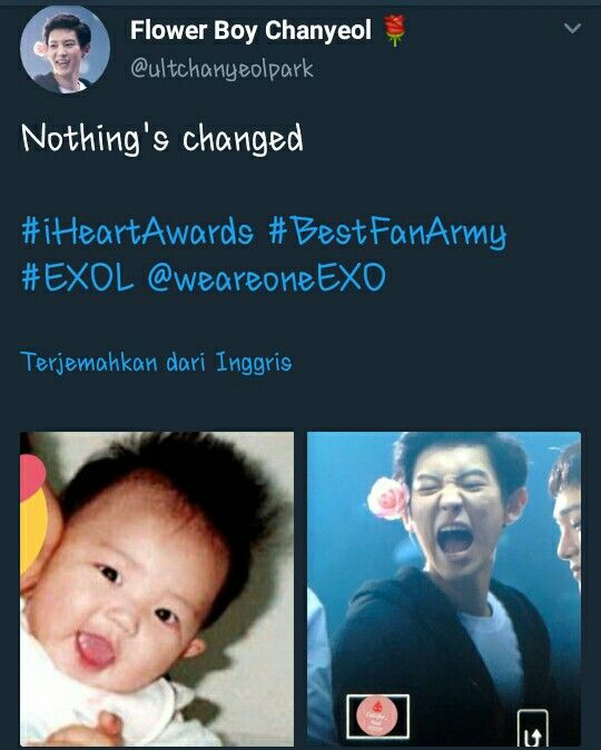 Yea Never Change Exo Memes Exo Sign Bts And Exo
