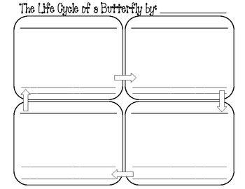 Worksheet Butterfly Life Cycle Worksheet butterfly life cycle cycles and worksheets on pinterest worksheet craft