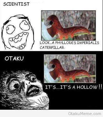 It's a HOLLOW!!! haha