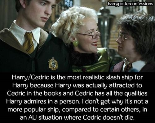 Harry Cedric Is The Most Realistic Slash Ship For Harry Because Harry Potter Headcannons Harry Potter Goblet Harry Potter Puns