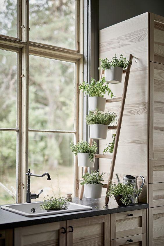 Aromatic ladder