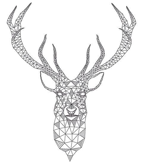 Line Drawing Deer : Most popular tags for this image include art deer