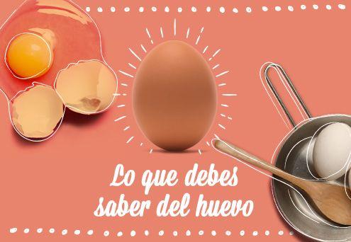 Lo que debes saber del huevo