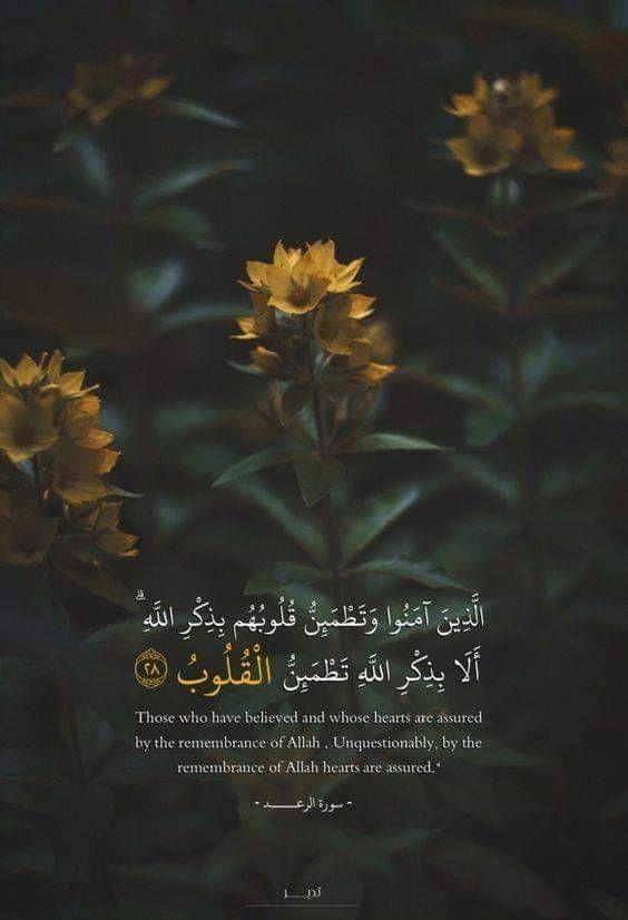 Koran Bilder Hintergrund