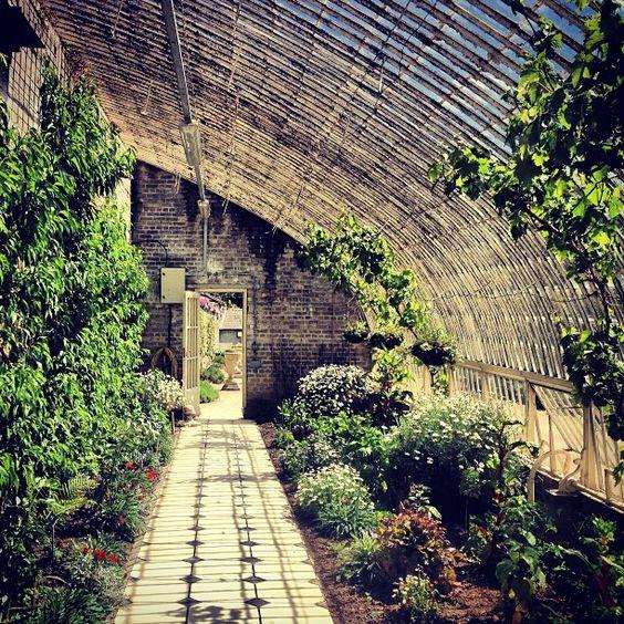 Pinterest the world s catalog of ideas for Garden design ideas dublin