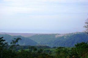 View from NatureWalk 1