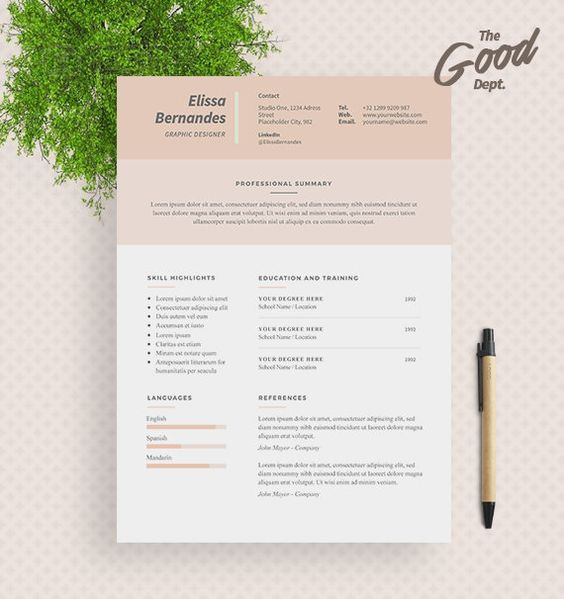 3 page Resume Template \/ CV Template Cover Letter by TheGoodDept - 3 page resume