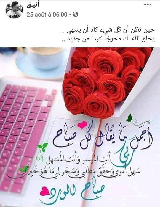 كلمات وحكم Good Evening Wishes Good Morning Texts Good Morning Flowers