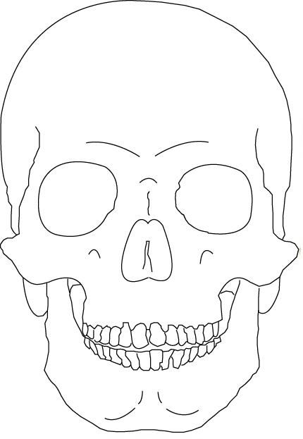 Skull Line Drawing Easy : Skull outline only by vicious masks pinterest