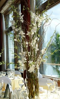 curly willow and white dendrobium orchid centerpiece Search