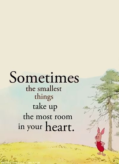 """sometimes the smallest things take up the most room in your heart."""