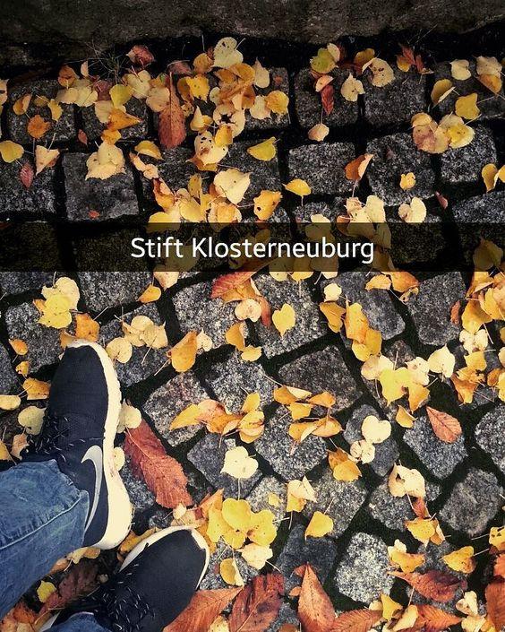 #stift #klosterneuburg #austria #autumn #nike #black #roscherun #justdoit #travel #friday #instalike #tagsforlikes #followme