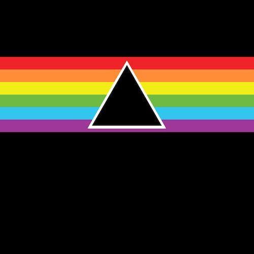 Pink Floyd Dark Side Of The Moon Reimagined Vinyl Record Album