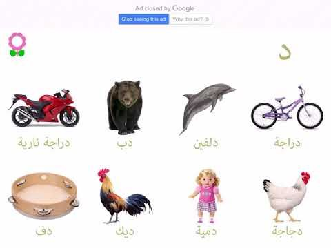 كلمات تحتوي على حرف الدال بحث Google Animals
