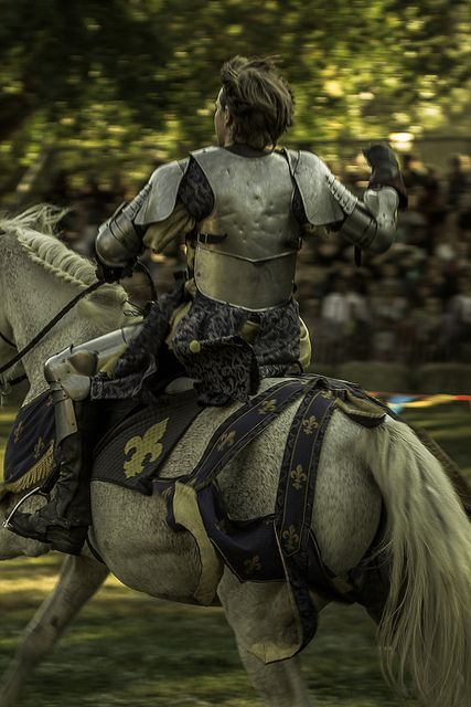 Knight in shining armor. #warrior