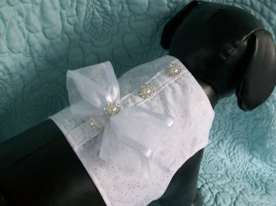 Wedding Dog Harness  or Wedding Cat Harness