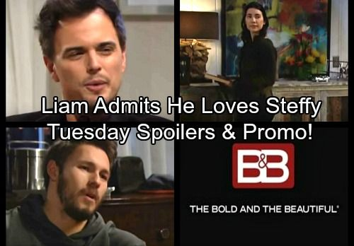 The Bold And The Beautiful Spoilers Liam Confesses Loving Steffy To Hope Wyatt Suspects Katie S Motives Bold The Beautiful Soap News Be Bold