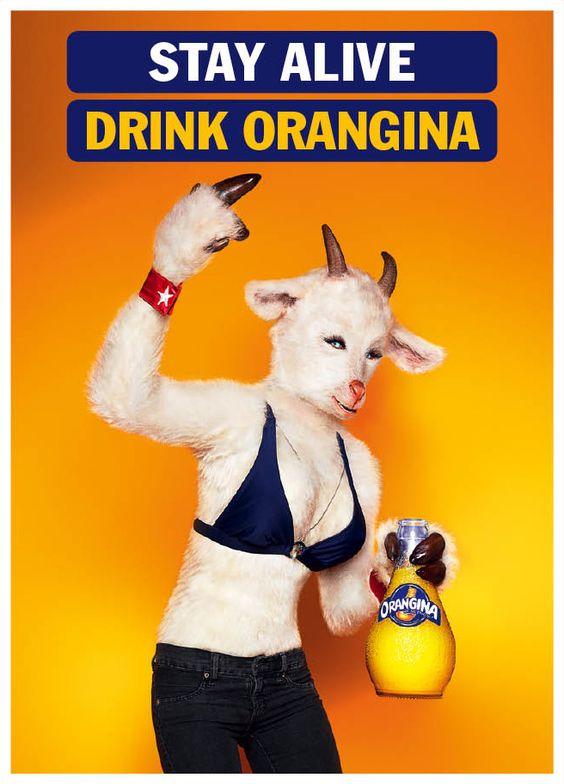 Orangina: Stay Alive, Goat