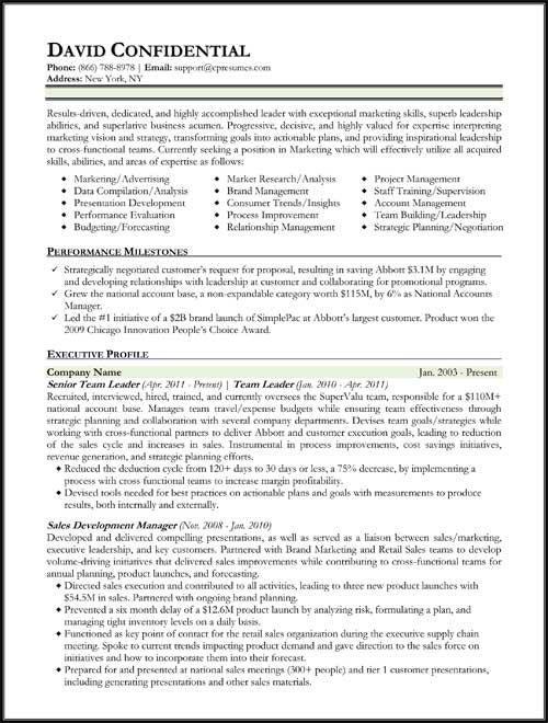 Hybrid Resume Format Work Pinterest Resume format and Resume - category development manager sample resume
