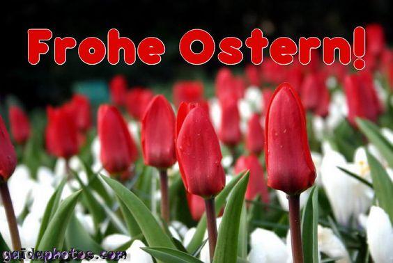 Lustige Ostergrußkarten - http://www.ostern-neu.org/lustige-ostergrusskarten/