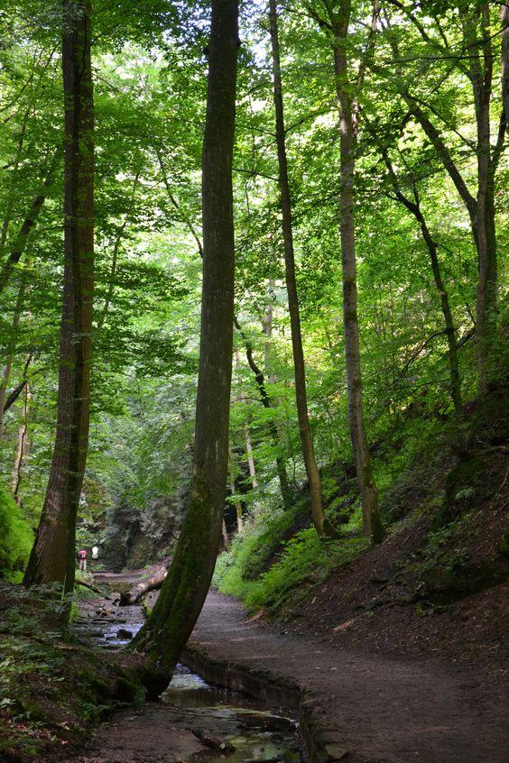 Drachenschluchtweg - Eisenach