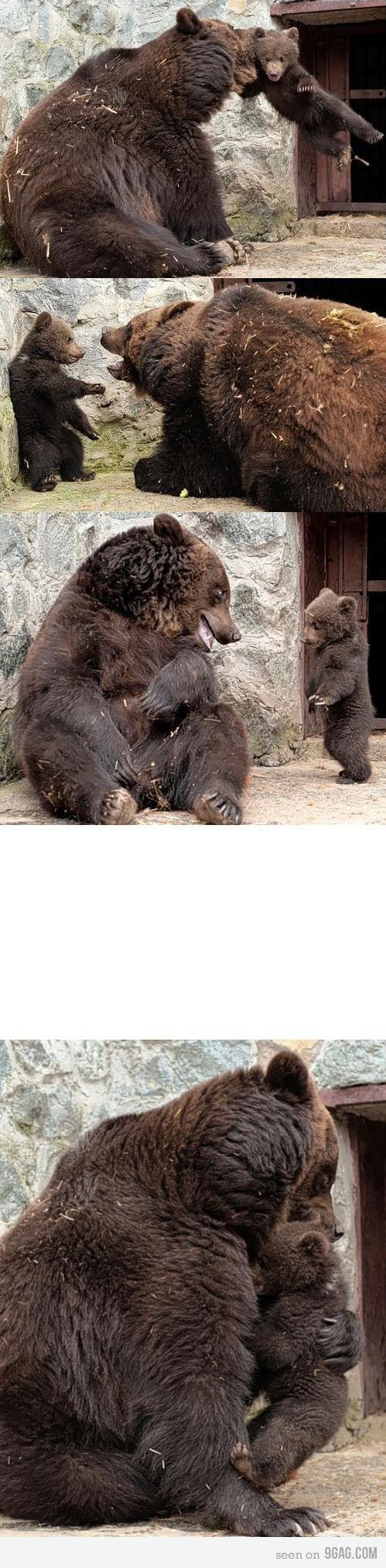 parenting, bear style