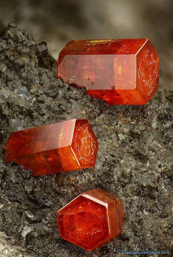 UP CLOSE & PERSONAL With This Vibrant Orange Vanadinite from the Hamburg Mine Arizona; USA!   Photo: Geology Wonders