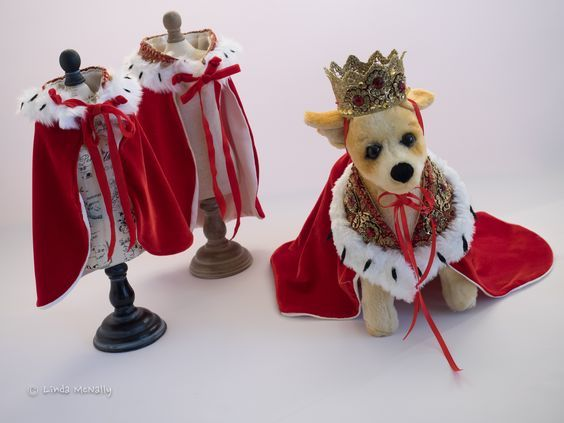 All hail the King! Pet Costumes designed by The Doggie Nanny. #fundraising #event #dog #dogs #pets #petcostume #runway #petfashionshow #fashionshow www.doggienanny.com