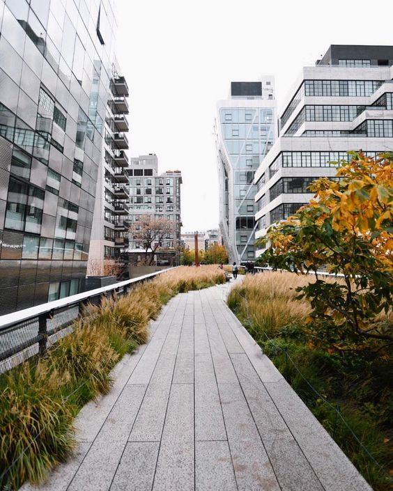 """If you're traveling to New York, walking the High Line is one of the coolest…"