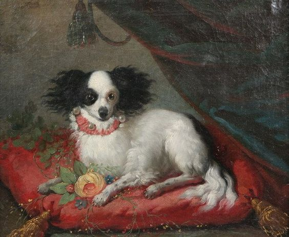 18th century oil painting - SPANIEL SITTING ON RED CUSHION