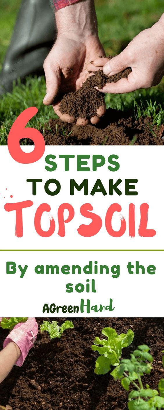 How To Make Topsoil In 6 Simple Steps With Images Organic Gardening Soil Top Soil Garden Soil