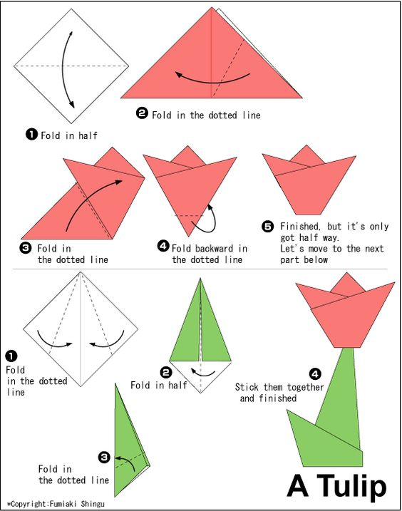 tulip origami origami pinterest origami and tulip