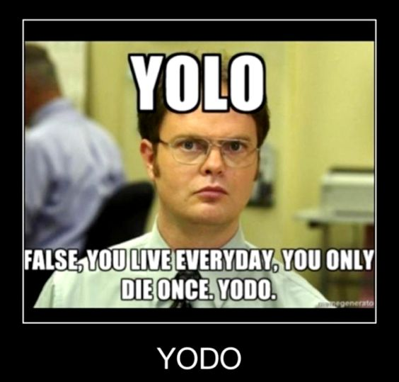 the office dwight schrute memes   the office # dwight schrute... I thought you might appreciate this#