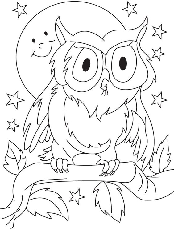 owls coloring pages preschool | owl coloring pages for preschoolers | Coloring Pages For ...