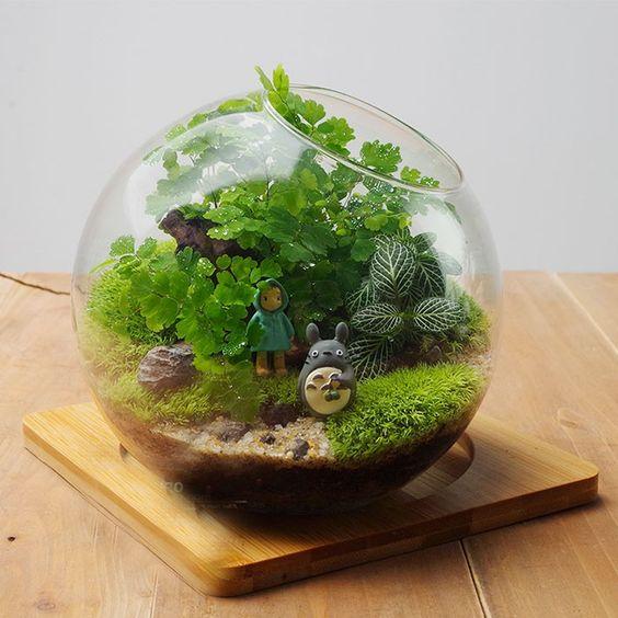 Terrarium with Totoro:
