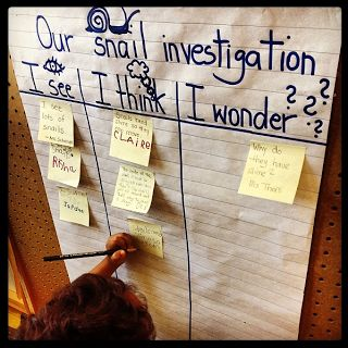 Snail Investigation.... this is a great anchor chart for inquiry. Students write what they see, think, and wonder about the question. They can put sticky notes up so that the anchor chart can be used again.