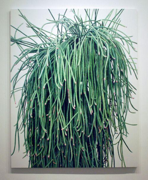 one crazy plant