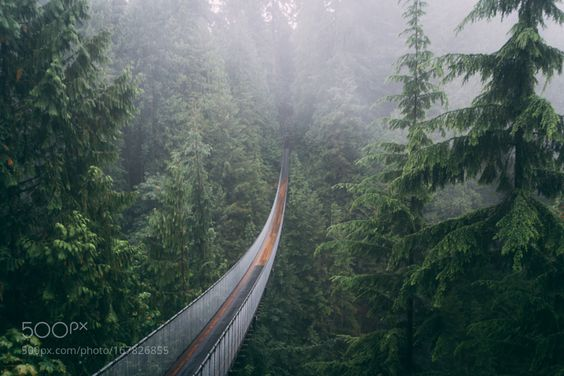 """Vancouver suspension bridge mornings Go to http://iBoatCity.com and use code PINTEREST for free shipping on your first order! (Lower 48 USA Only). Sign up for our email newsletter to get your free guide: """"Boat Buyer's Guide for Beginners."""""""