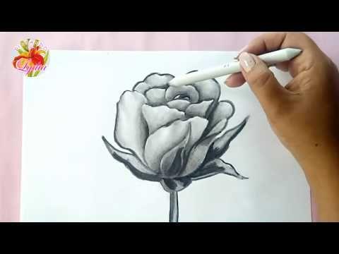Como Dibujar Una Rosa How To Draw A Rose Youtube Dibujos De Rosas Como Dibujar Rosas Como Dibujar