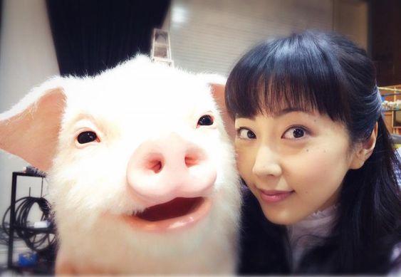 豚と木南晴夏