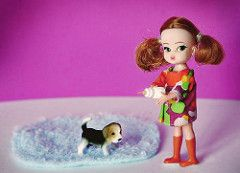 Feed the dog (Poohie <3) Tags: rement vintagedolls dollydarlings