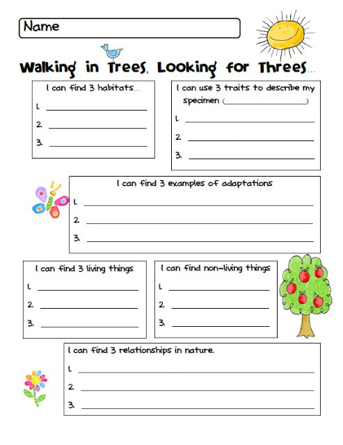 first grade science worksheets living things living and non things clipart kid1st grade. Black Bedroom Furniture Sets. Home Design Ideas